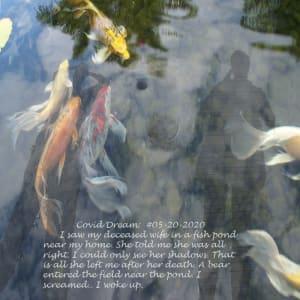 Covid Dreams: Connie's Return by Alan Powell