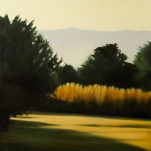 Dawn through the Orchard