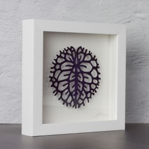 #83 Nymphoides crenata lilypad by Meredith Woolnough