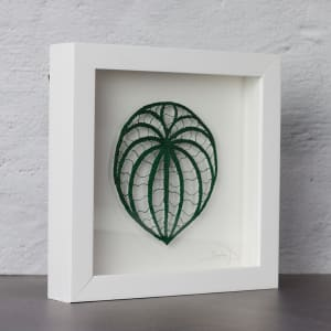 #90 Watermelon Peperomia by Meredith Woolnough