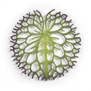 Lily pad (purple edges)