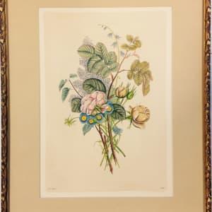 2649 - Botanical Print of Mixed Flowers by Jean Louis Prévost (1760 - 1810)