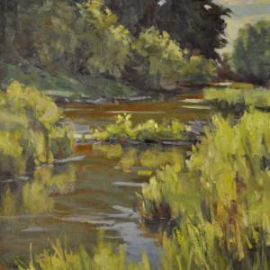 11645 pine creek afternoon qcc5ju