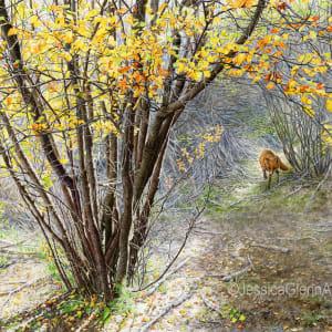 Autumn Comes Creeping by Jessica Glenn