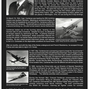 Gen. Robert L. Cardenas by Richard Becker