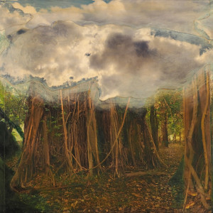 Cloud Cover, Amazonia by Lynda Frese