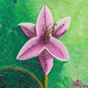 Stargazer lily atnigo