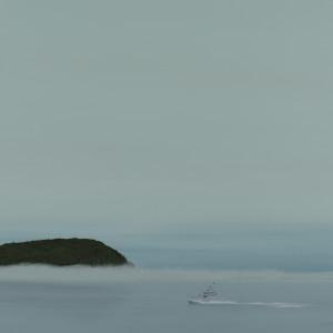 Bald Porcupine by F. Lipari