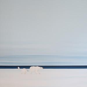 Edge Of Existence by F. Lipari