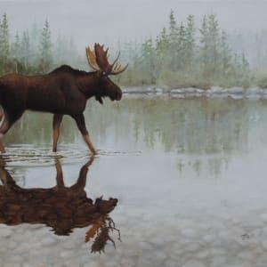 Reflection On The Rocks by Tammy Taylor