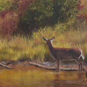 The Water Hole by Tammy Taylor
