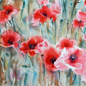 "10th Place - Ibolya Taligas - ""Poppy Field"""