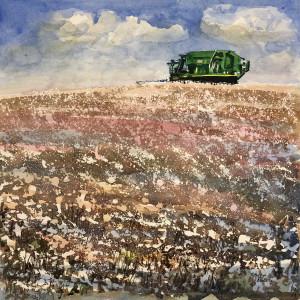 Cotton harvest boston georgia nte21k