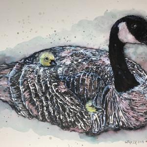 Matilda - Canada Goose Nesting - SOLD