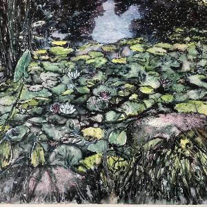 Waterlilies - Enlightenment