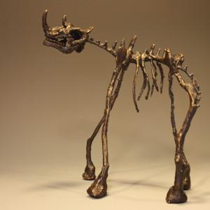 Rhino 1 arnvxr
