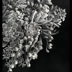 Abundant Succulence #3 (Framed) by Rhonda Nass