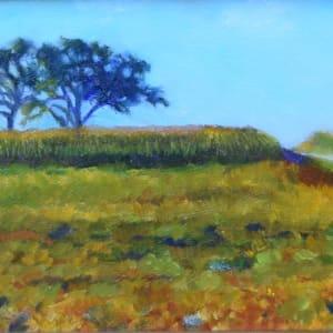 Colours of the Harvest (Framed original)