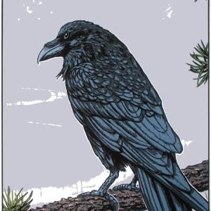 Gaagaagi, the Raven (Framed) by John Miller