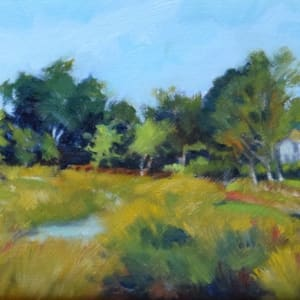 Mill Creek Parkway (Framed original) by Jane Varda
