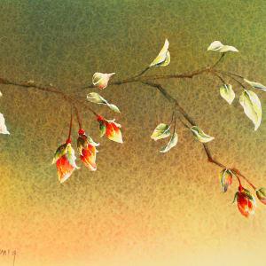 Plum Blossoms II (Framed Original) by Linda Koenig