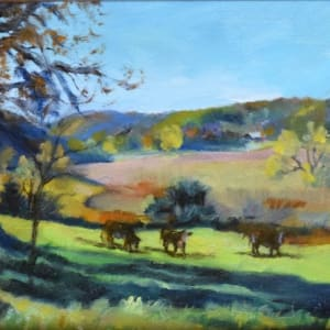 Spring Valley Morning (Framed original) by Jane Varda