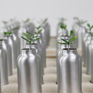 共生苗 Symbiotic Seedlings by 陳漢聲 CHEN Han-Sheng