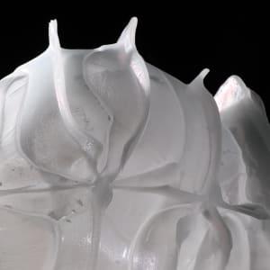 Inflatable 52 (Tipula) by Linda van Huffelen