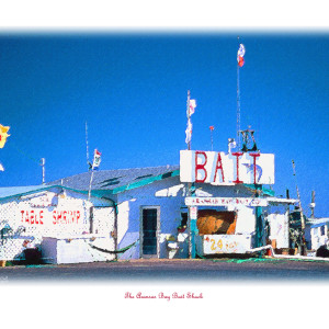 The Bait Shack by Wes Odell