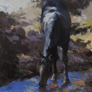 Rivers in the Desert by Lyn Boyer