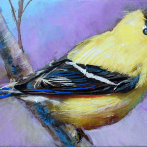Alluring Goldfinch by Pat Cross