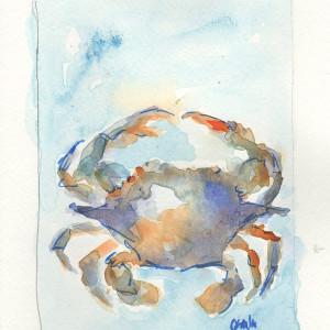 Crab Zodiac by Corinne Galla