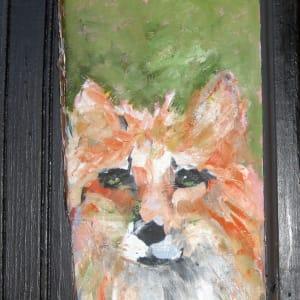 Swift red fox v5kdt6