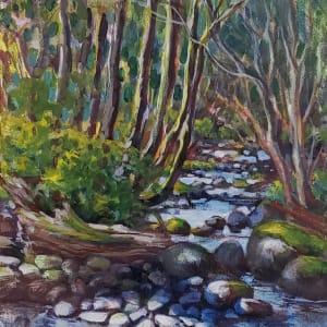 """Stone shadows - Spring creek"""