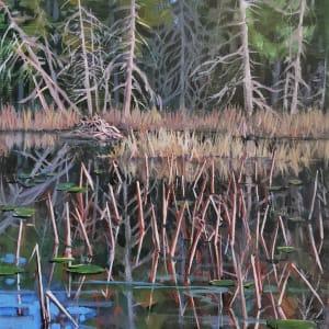 """First light - Snag / Dam"" Trout Lake - Sunshine Coast B.C."
