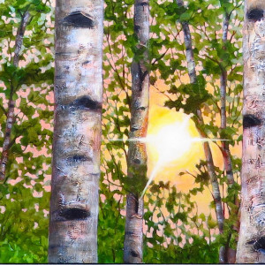 Sun Through Birches