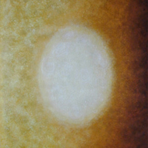 Cosmic Series #1 (world Egg) by Merrilyn Duzy