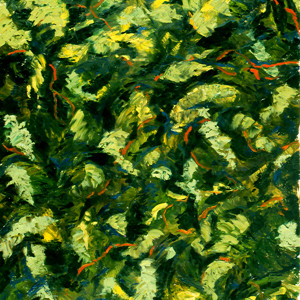 Green Abstraction by Merrilyn Duzy