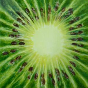 Kiwi by Merrilyn Duzy