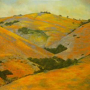 Gorman Series: Flowering Hills VII by Merrilyn Duzy