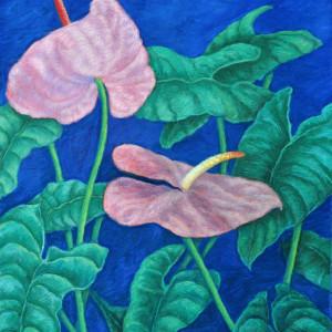 Pink Antherium by Merrilyn Duzy