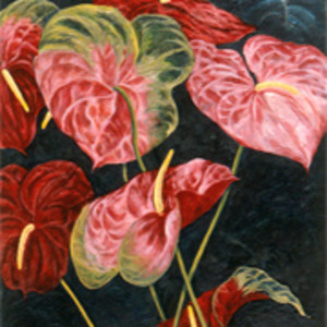 Red & Pink Anthuriums by Merrilyn Duzy
