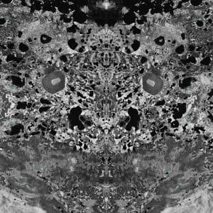 Supersymmetry II
