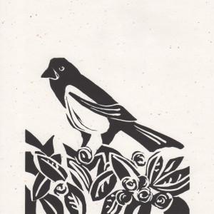 Magpie #2