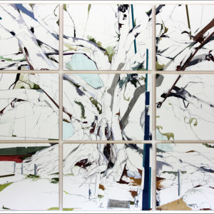 "34° 24' 49.45"" N 119° 41' 38.15"" W Moreton Bay Fig SB II (20130327) (9-panel)"