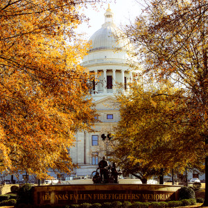 Autumn at the Capital by Y. Hope Osborn