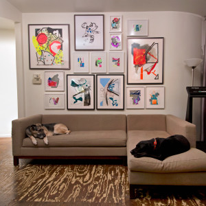 Wall Installation - various framed works on paper