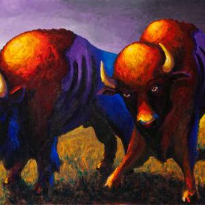 Brothers Bison by Steve Miller
