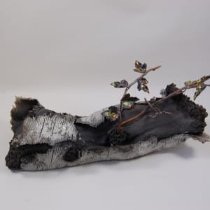 Secret Life of ... Trees with copper branches by Beth Kamhi