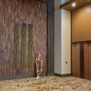 Tension   5     located at the JW Marriott ,Anaheim CA. ONE  IS AVAILABLE by Beth Kamhi